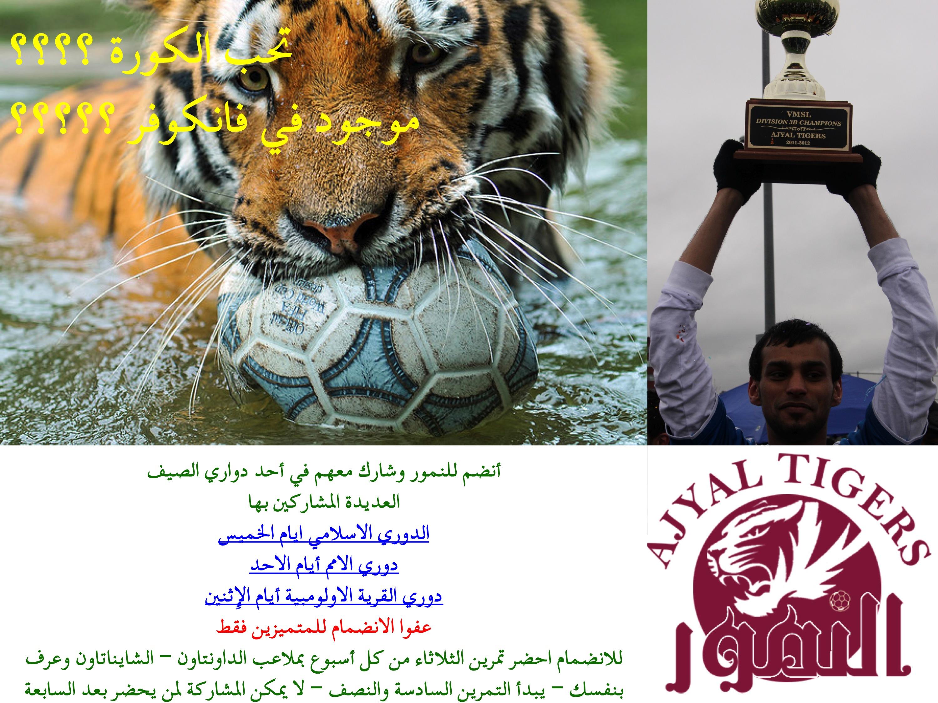 ���� ��� ������ ���� ����  ��������:tigers summer ad.jpg ���������:174 ��������:1.38 �������� �����:21192