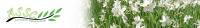 نحن كمركز متخصص في الخدمات العلمية بالذات في مجالات الطب والعلوم الطبية، نعمل على توفير فرص التدريب والقبول في الجامعات الجامعات الالمانية والسويدية. أن سياستنا قائمه على مساعده الشباب...